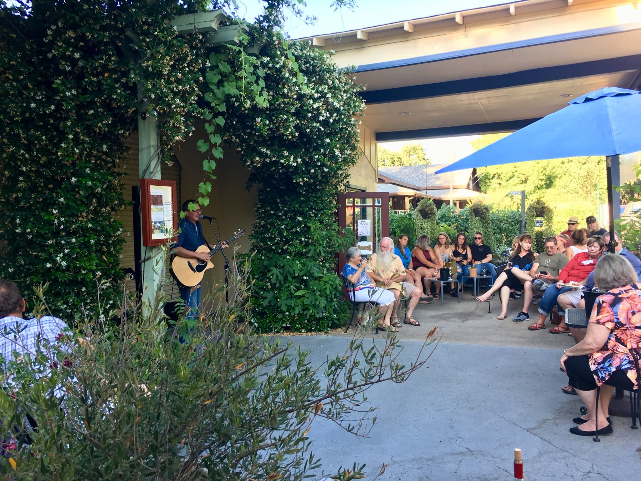 musician playing on an outdoor patio garden